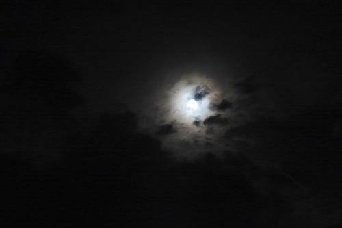 2018年5月29日(火)ふ印ラボ定例ゼミ第8回に続けて高さん幹事役をつとめた満月交流宴『月宮殿祭』開催さる!
