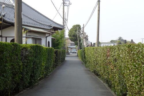 ふ印ボス、一身上の都合により熊本県の阿蘇から変えた本籍地は東京都台東区谷中です。