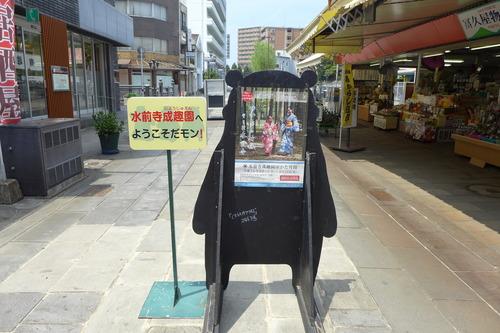 酷暑猛暑の中、汗をかきかき熊本の路上観察!