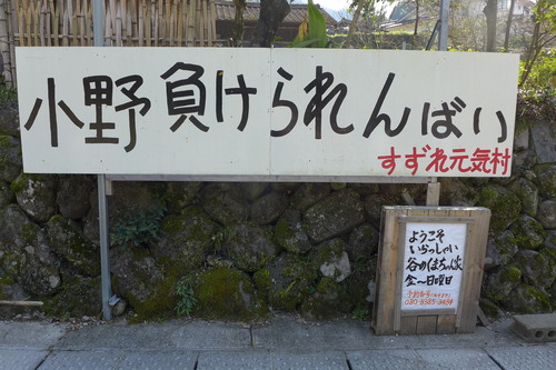 20190317日田市小野地区の水害被災地の現況!