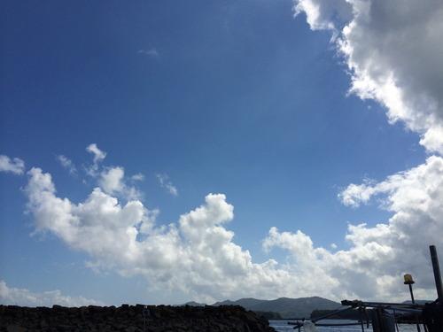 夏季活動報告第1弾 下浦フィールドワーク 2014.7.26〜28
