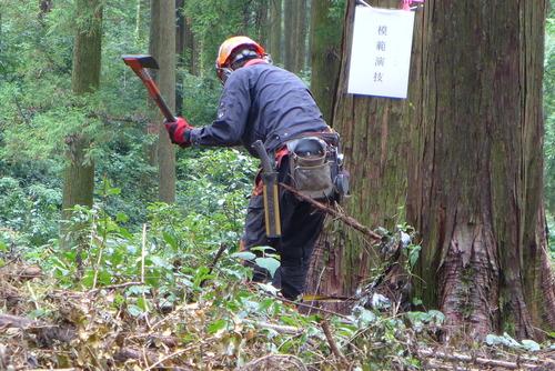2020年9月11日(金)第19回熊本県林業技能競技会を見学踏査!