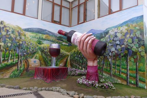 Minh Hanh女史と歩く〜Da Latの郊外に広がる丘陵にはフランスよろしくブドウ畑もワイン醸造所もあるのだが・・・