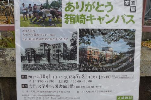 松原の風吹く九州大学箱崎キャンパスの現「ありがとう箱崎キャンパス」