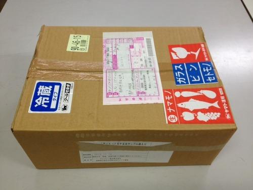 2013.9.3天草高浜の宇土寿美さんから天草高浜ぶどうが届きました