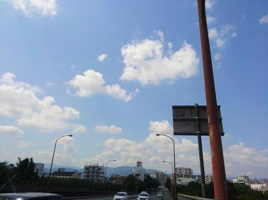 KIMG4769_Fotor
