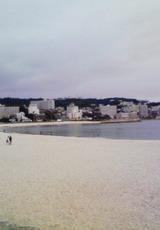 きれいな白良浜