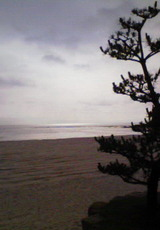 松越の白良浜