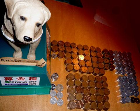 盲導犬募金箱12