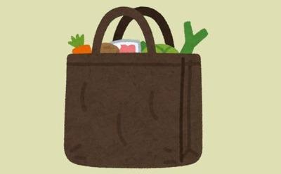 エコバッグは地球に優しくない!? レジ袋有料化しても意味がない?