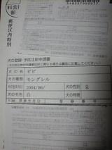 c51d81a6.jpg