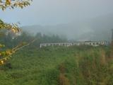 霧の中の電車