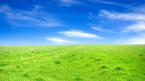 Green-grass-blue-sky_1366x768