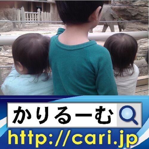 36_ushirosugataw500x500