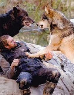 2016年05月10日(火) 「 狼の群...