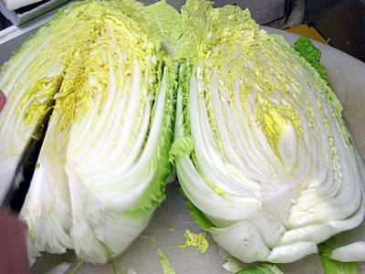白菜入荷(淡路島)20080213