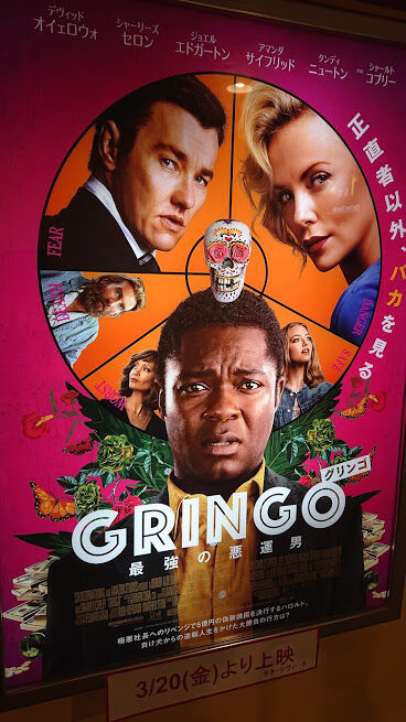 20-039 gringo 1