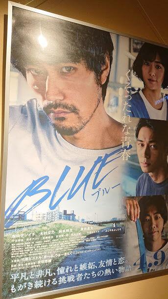 21-04-043 blue 1