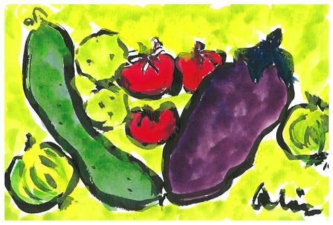 夏のお野菜