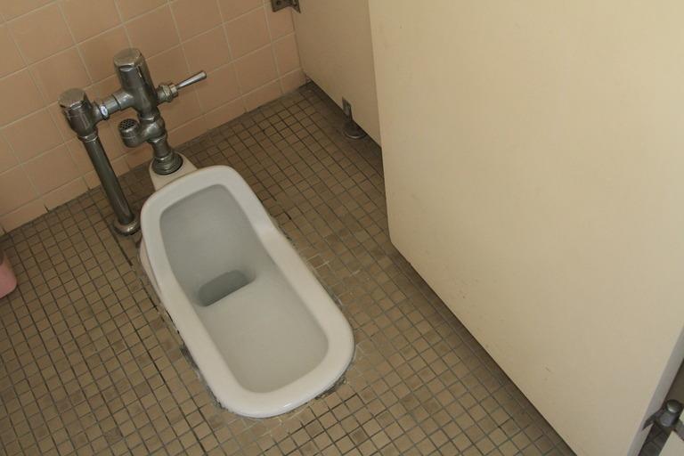 公園のトイレがどうにも魅惑的に見えた