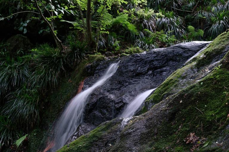 地元では「骨壺の滝」と呼ばれており誰も近寄らない