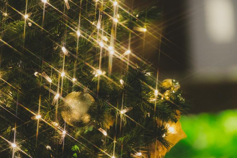 christmasIMGL9689_TP_V