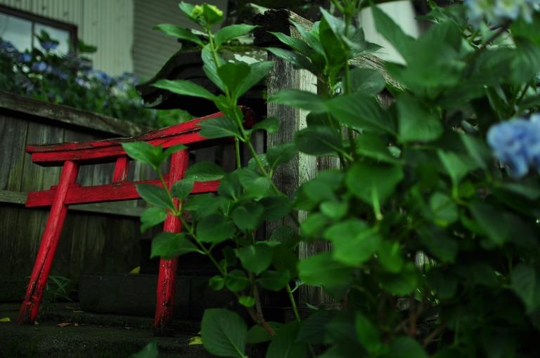 NAT88_ajisaitohokora_TP_V