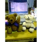 http://livedoor.blogimg.jp/kendia6/e14c7e20.jpg