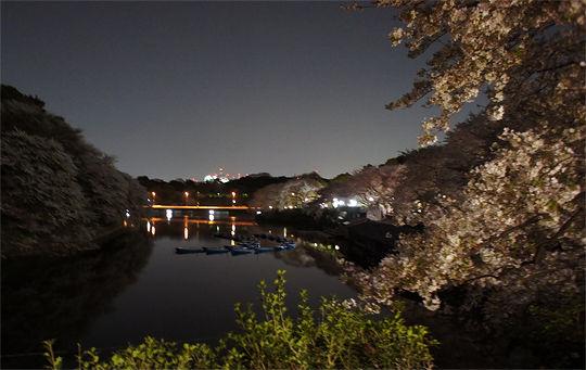 1104_chidorigafuchi02