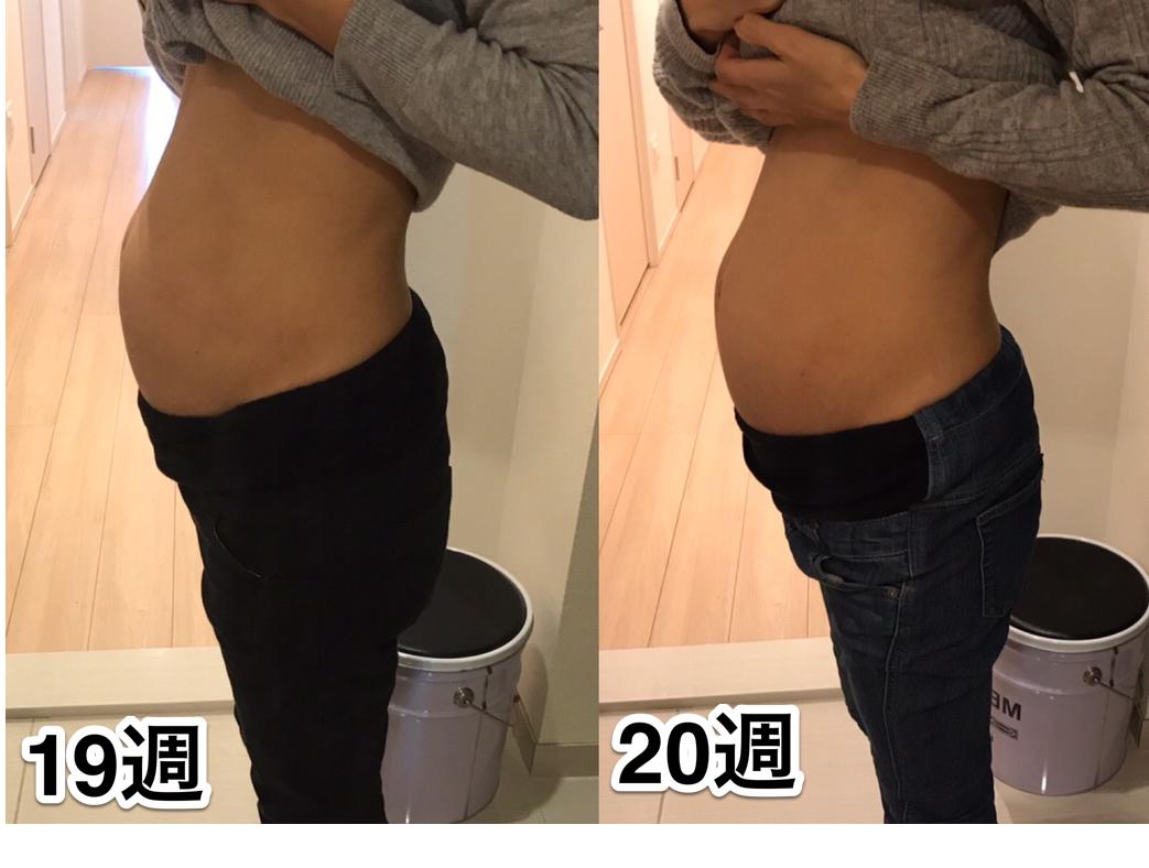 妊娠19週 お腹