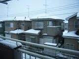 久し振りの雪景色