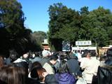 氷川神社の人ごみ