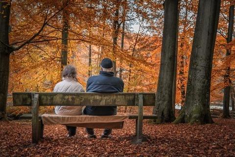 autumn-1791854_1920-546x364