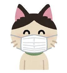 【悲報】コロナウィルスが人間→ネコ、ネコ→ネコに簡単に伝染るならさ・・・・