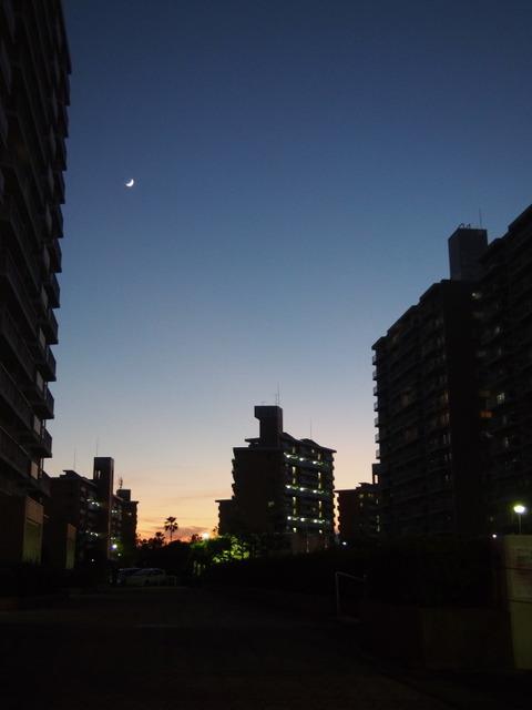 鴨池新町の夕暮れ2