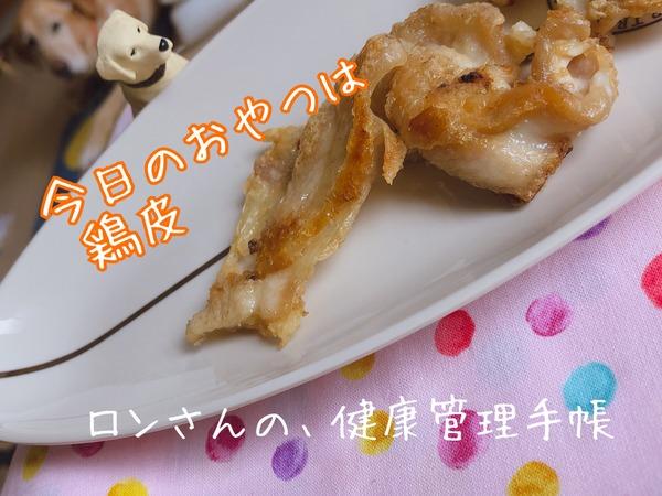 20190913 鶏皮パリパリ (14)