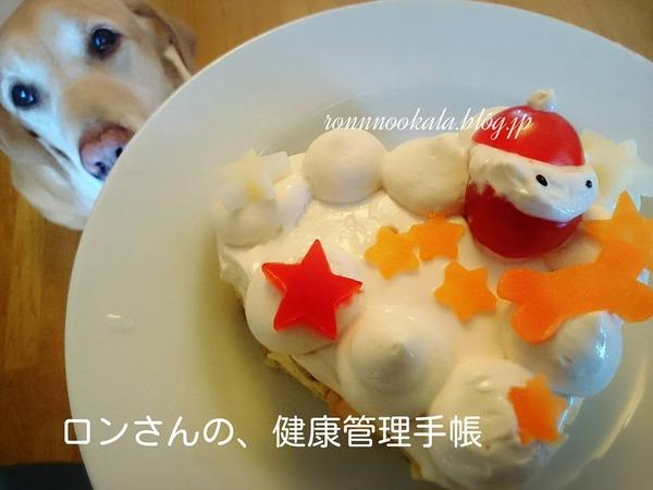 20151226 クリスマスケーキ2015 94