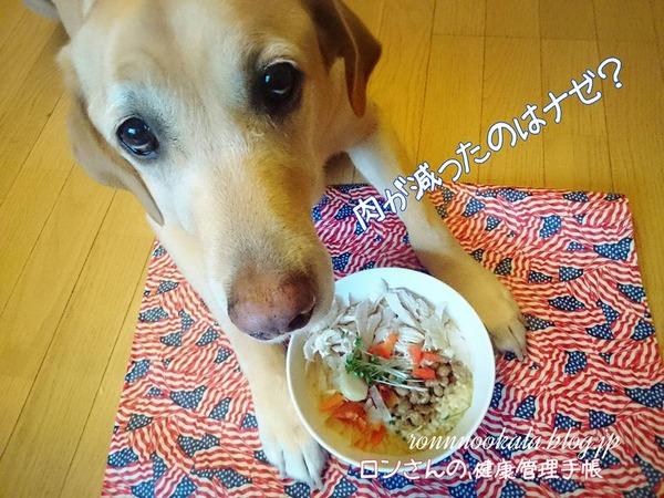 20151102 ロンご飯 納豆ご飯 5