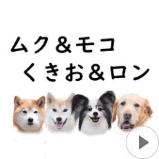 ムク&モコ&くきお&ロンの動くスタンプ