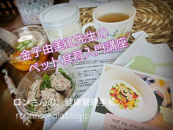 20170824 金子先生の入門講座 6