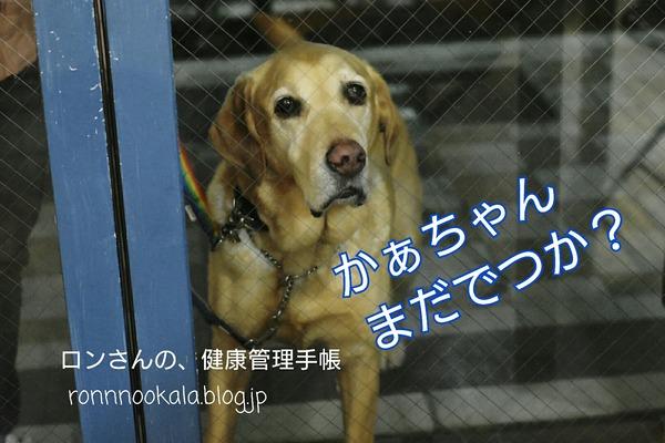 18-03-04-20-43-44-765_deco