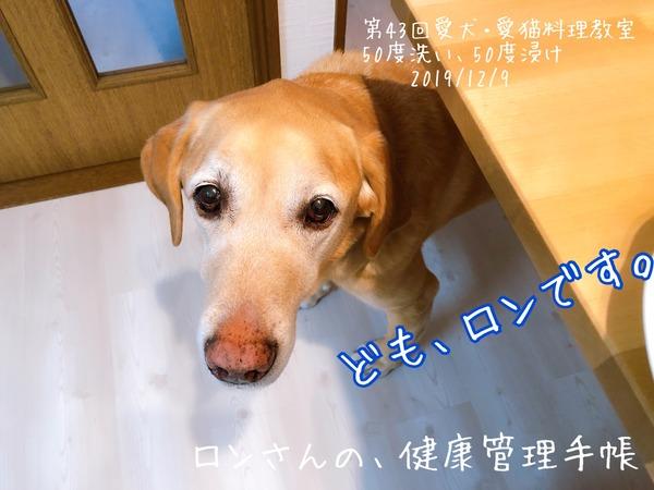 20191209 43回愛犬料理教室 50度洗い (52)