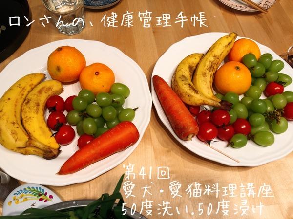 20191103入門&41回 (32)