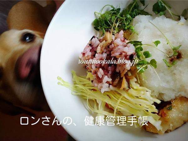 20160401 鶏ムネ 大根おろしの お揃いごはん 7