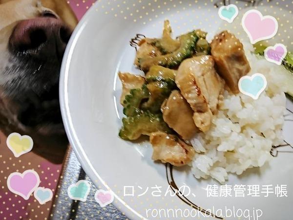20170821 ゴーヤと鶏ムネ 3