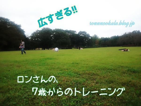 20161019 トレーニング その1 (3)