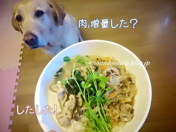 20151019 ロンご飯 鰤アラ犬ごはん 3
