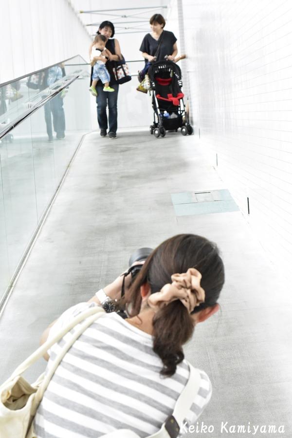 20180901 奏多を撮る会 (19)1