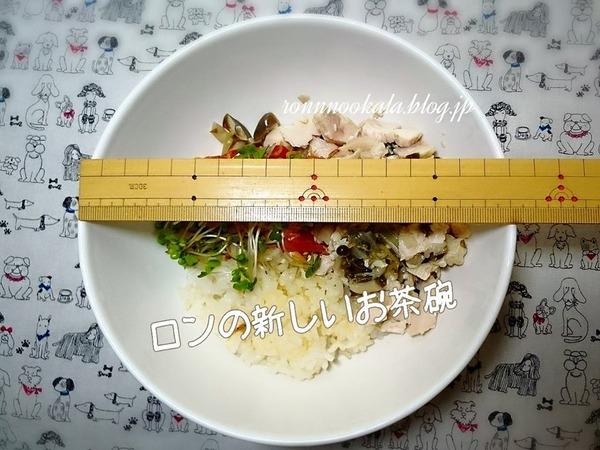 20150930 ロンご飯 9月の〆 新茶わん 5