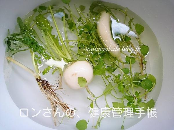 20160107 七草 6